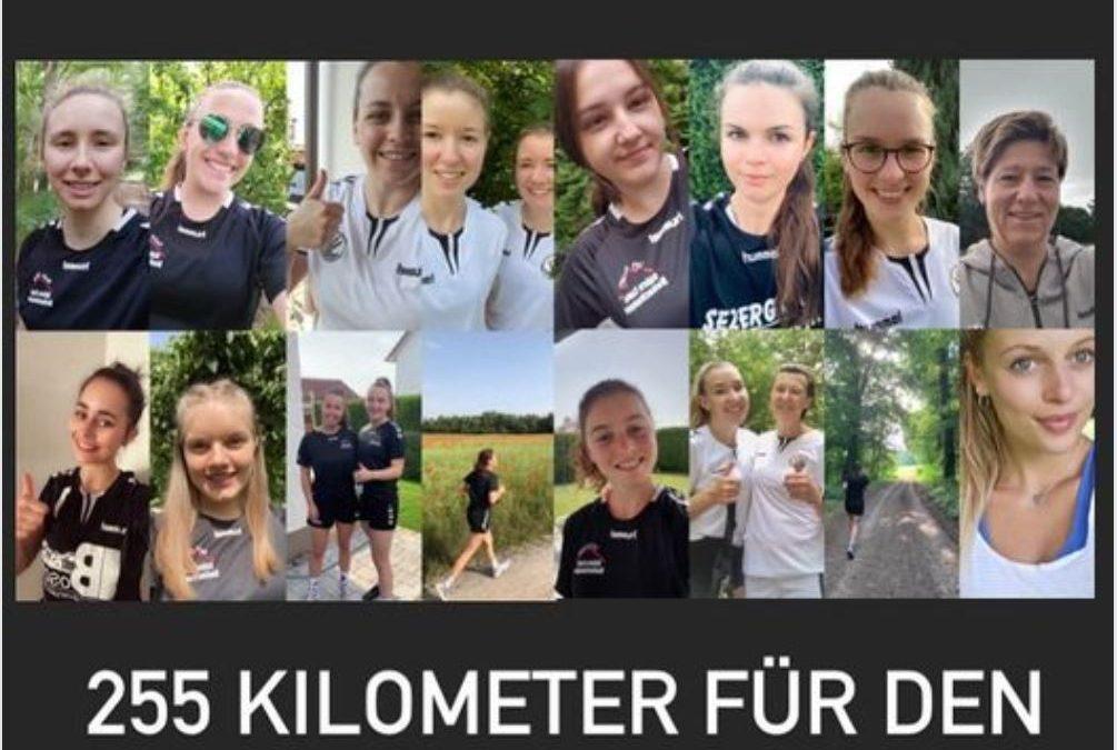 FSG   FSG sammelt Kilometer für Auxilium e.V.